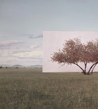 Myoung Ho Lee_Tree... #2_2012