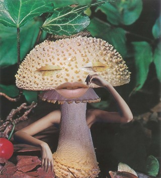 1. Seana Gavin, 'Mindful Mushroom', courtesy of th